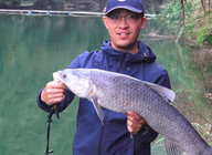 《白条游钓》 8米深水中大青鱼,青鱼疯狂发力,大物杆都拉成了U!