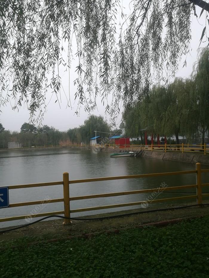 薛录镇公园垂钓园
