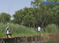 《釣魚百科》第142集 什么是斤塘?