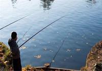 作釣時一定要避免的幾個誤區!