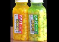 《東北漁事》遼寧眾信DMPT玉米王大物都瘋狂