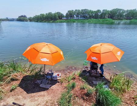 高溫天氣 也擋不住釣魚人的腳步!