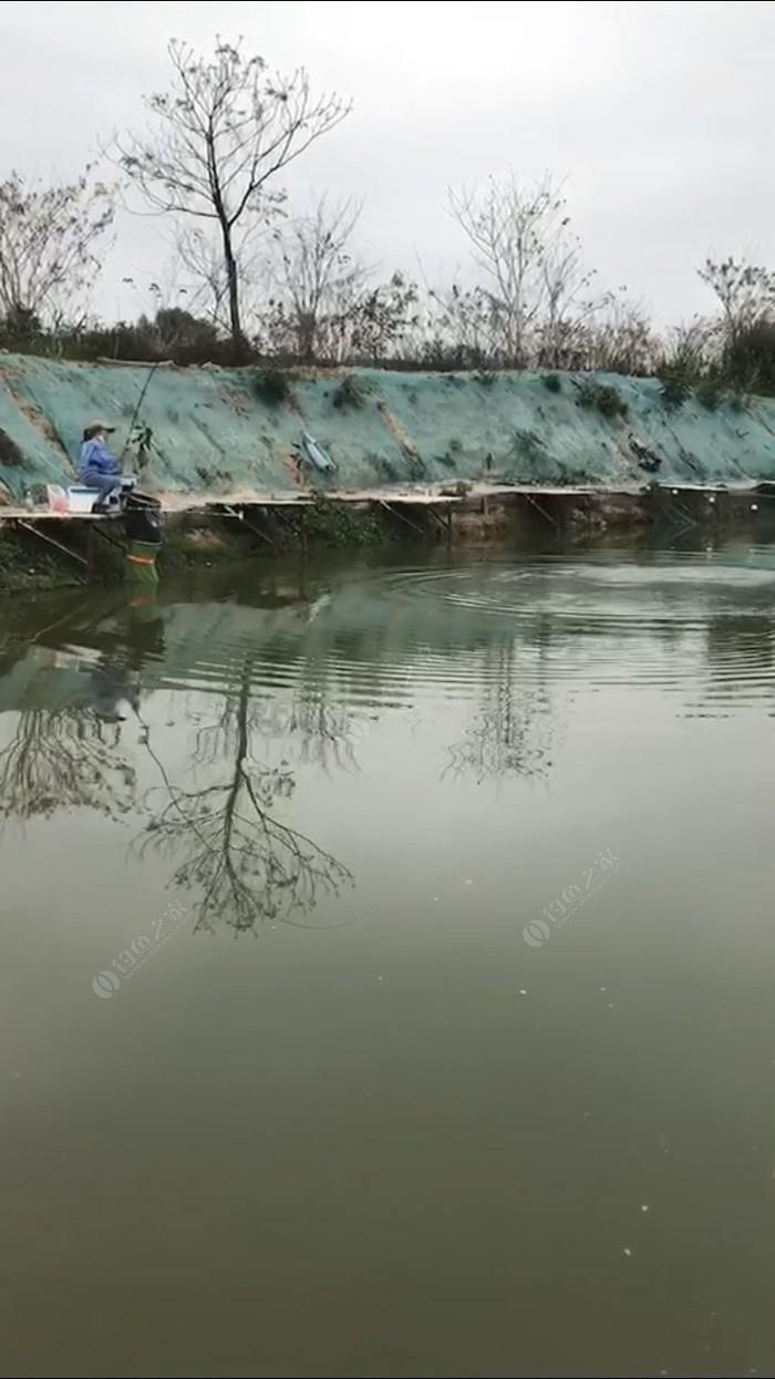 流溪河休闲钓场
