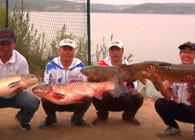 《東北漁事》遼寧眾信專業制餌20年陪你釣魚到底