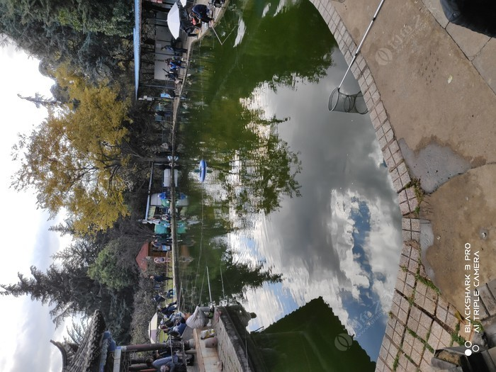 昙华寺公园垂钓园