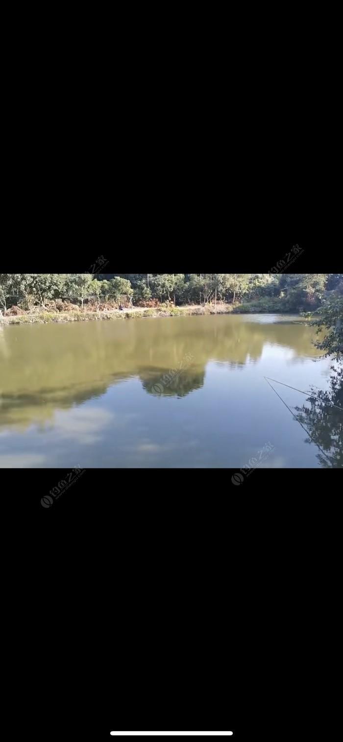 私人农庄钓鱼场
