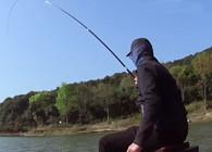《麦子钓鱼》钓鱼实战:不隐瞒钓点了,这小水库的鱼真是太能吃了!