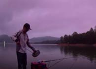 《麦子钓鱼》坚守太平湖 终于发窝 红珠 鲤鱼连竿
