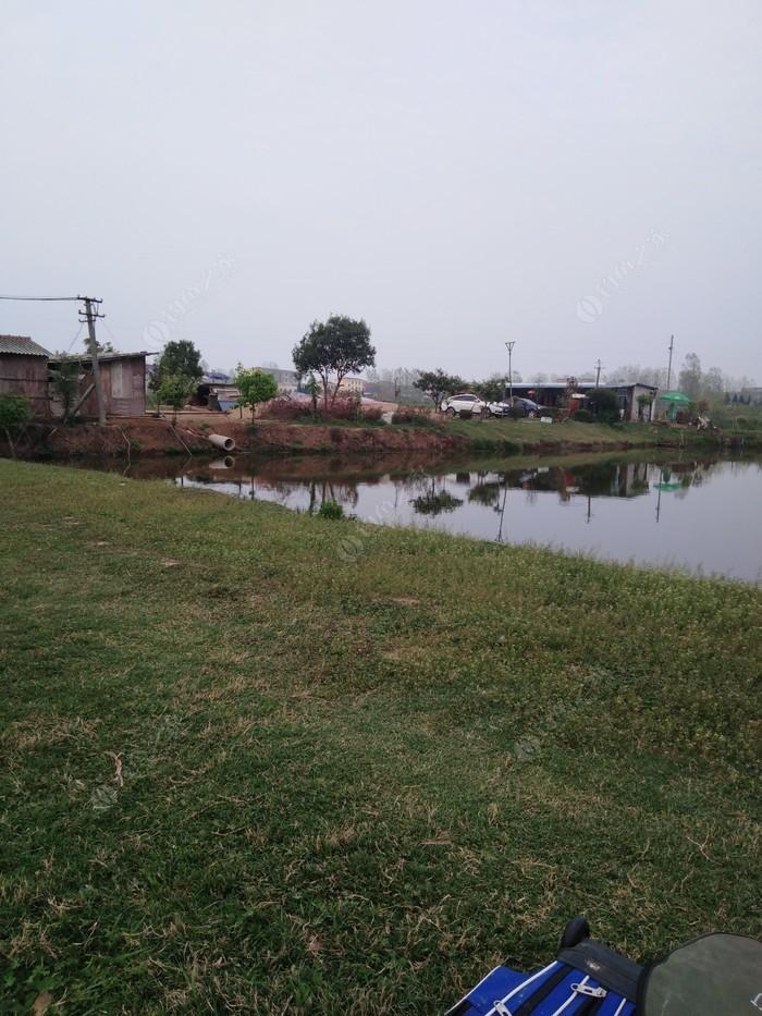 老湾钓鱼乐园