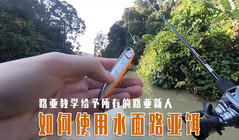 《全球钓鱼集锦》路亚教学,路亚新人如何使用水面路亚饵!