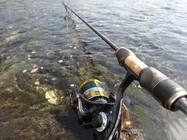路亚总是钓不到鱼,那是你没有用对方法!