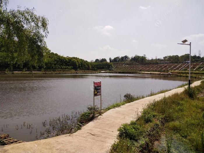 湖南金帆生态农场
