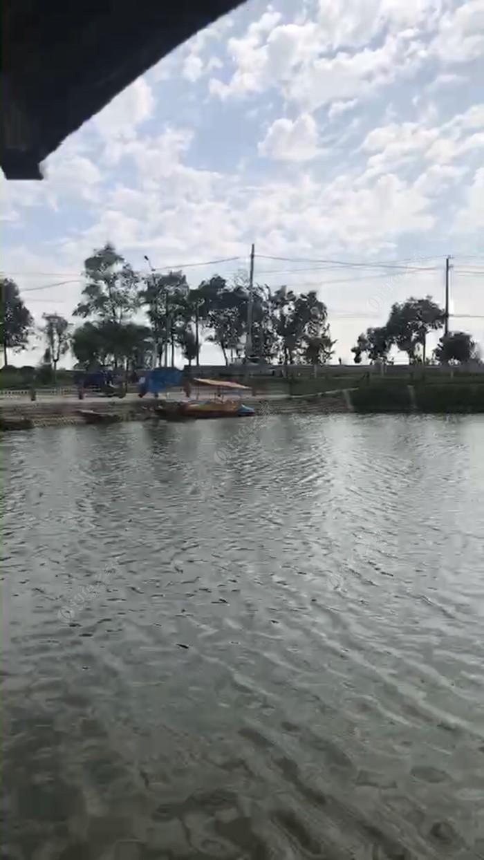 新河口垂钓园