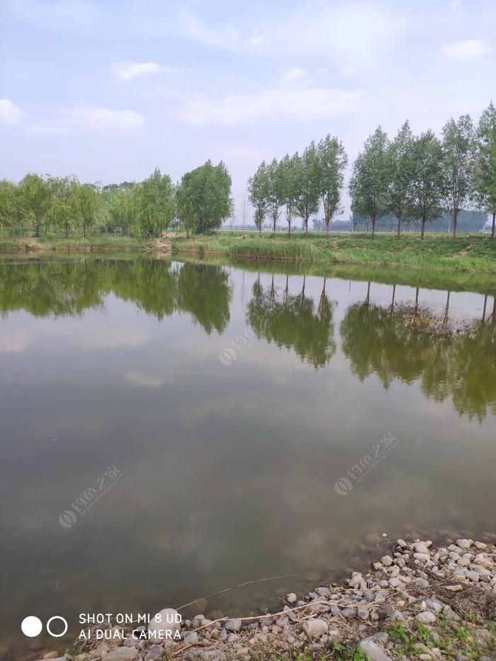 显旺生态鱼场