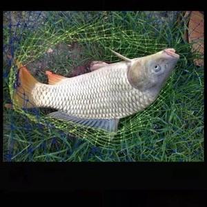 生态鱼钩场
