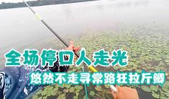 《悠然小釣》垂釣大清河全場突然停口,悠然用特殊釣法獲斤鯽!