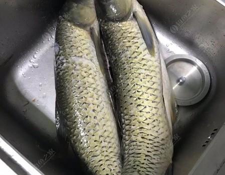 2020總結-魚獲大豐收釣技大提升,釣魚三人組一直在路上