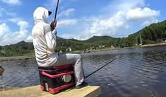 《麥子釣魚》原塘魚連桿看不上,移窩換位上四明湖精品鰱鳙!