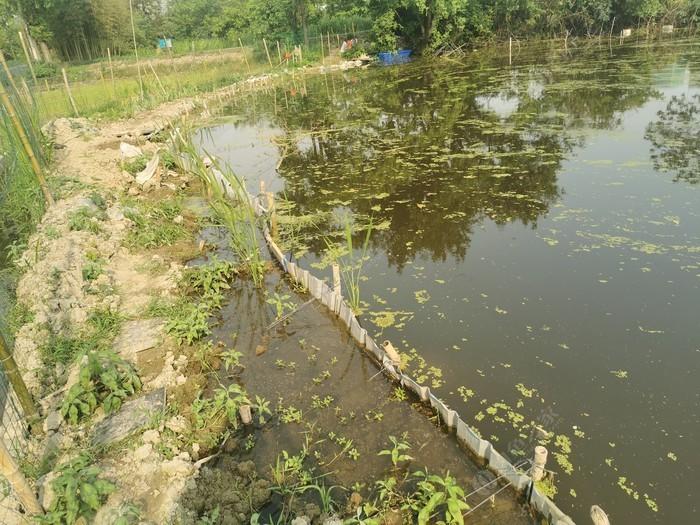 移动半养殖鱼场
