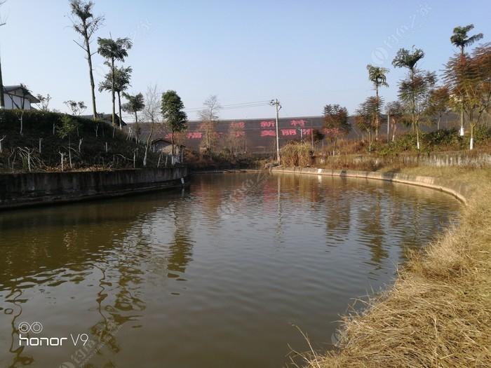 隆昌古宇新村