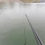 冬季钓鲫鱼用饵很关键,这么用饵才是王道