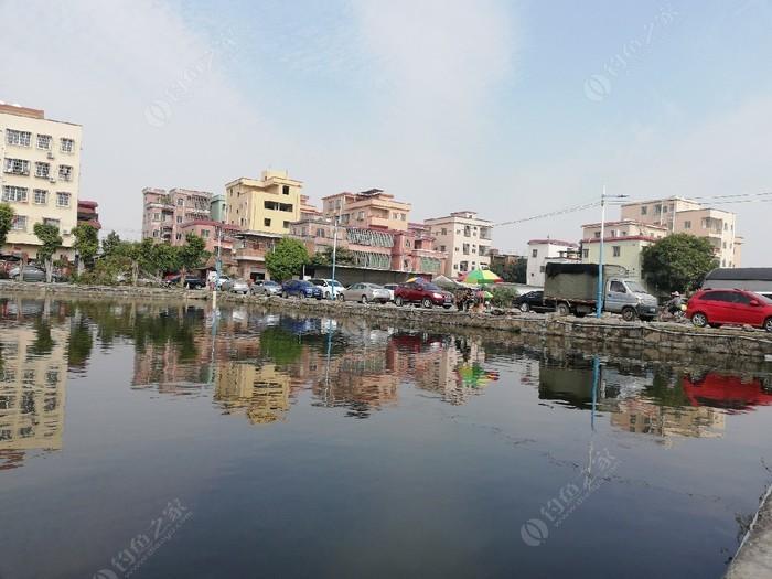 海南村钓鱼场