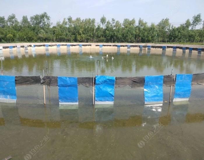 桂花園垂釣中心