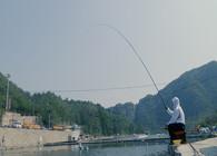 钓鱼之家无双鲤高碳新品4.5米实战测试 手感轻盈腰力强劲