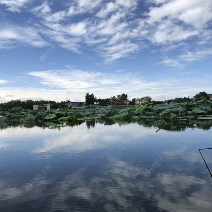 城北生态休闲垂钓基地