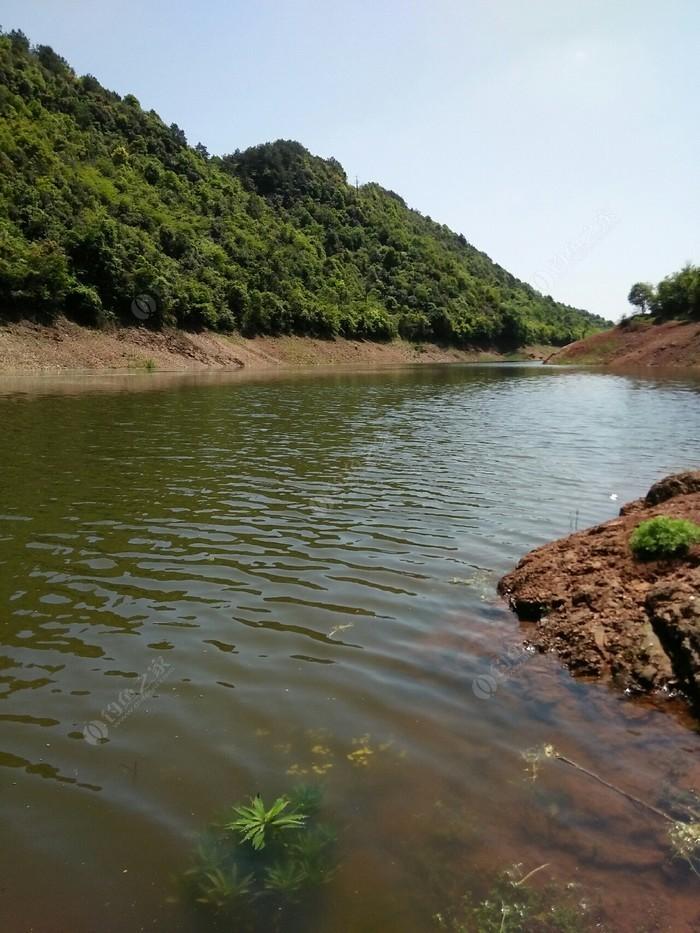 三里溪水库桃花岛