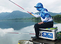 《白条游钓》 白鲦游钓太平湖,冒雨奔波百里,寻钓黄尾鲴
