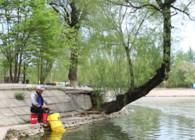 《釣魚百科》第239集 怎么使用包食釣法?