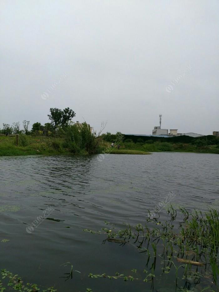 东湖钓鱼园