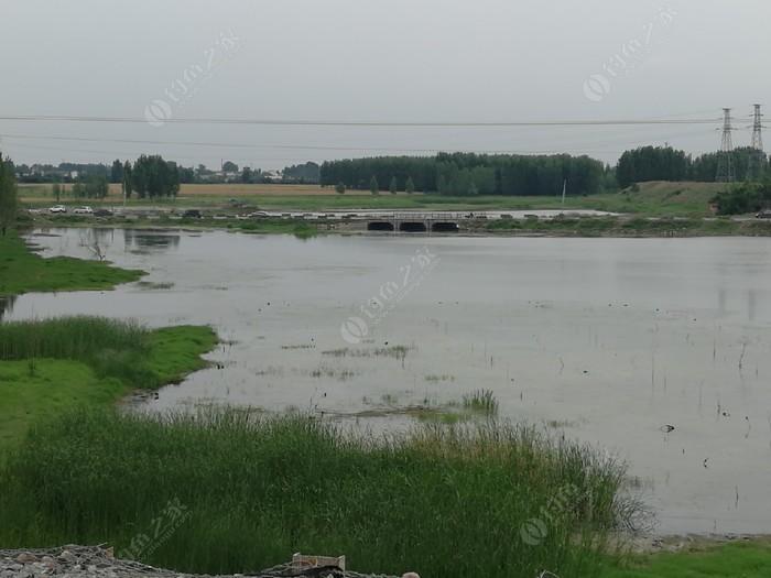 东北流村大河