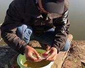 《户外老曹》同一片水域,今天比前几天多钓不少鱼,看老曹做了什么调整!