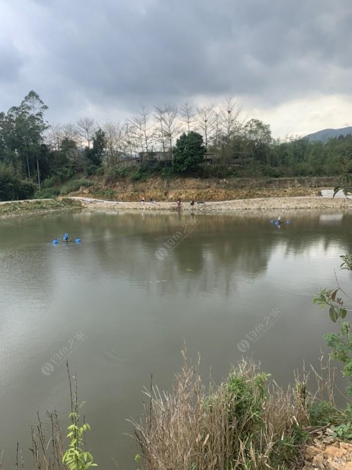 南浦山后钓鱼场