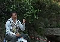《程宁钓鱼视频》竞技钓鲫鱼教学视频第10集