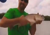 《钓鱼视频》外洋全明星连连上鱼