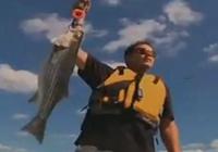 《钓鱼视频》国外全明星田纳西垂钓条纹鲈鱼