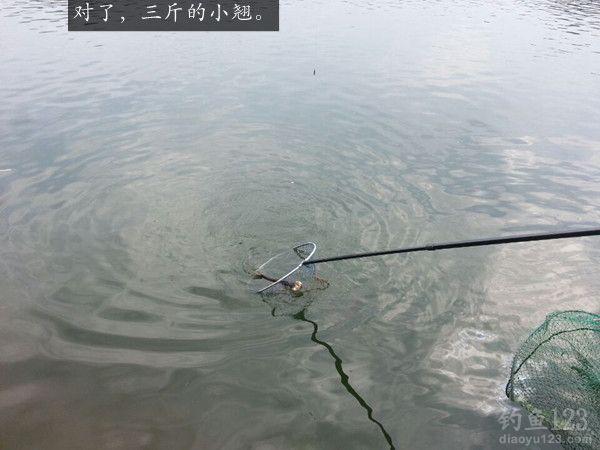 鲁班水库钓鱼