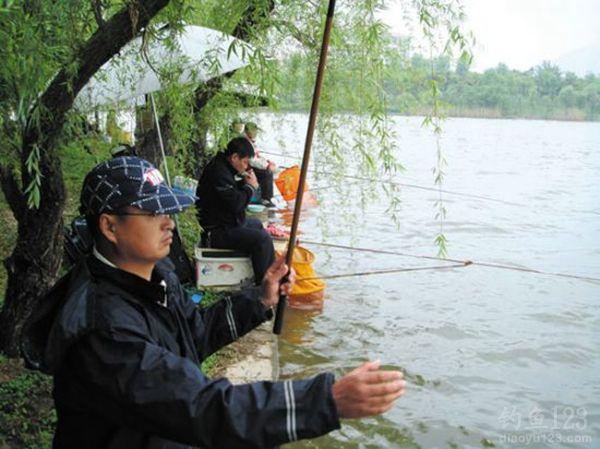 夏季黄河野钓钓鲤鱼