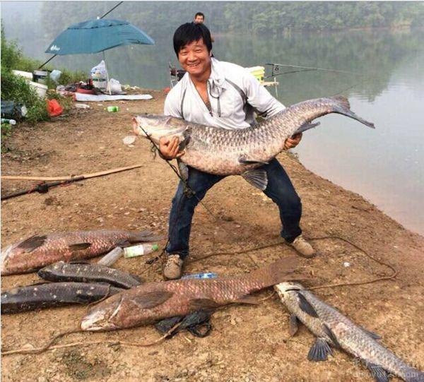 清江河钓鱼