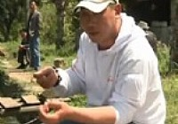 《张雪平钓鱼视频》第9集 拉饵和搓饵的正确方法