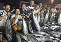 南油海钓狂钓三千斤金枪鱼累并快乐着