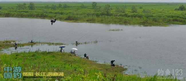 游釣中國第三站岳陽洞庭湖