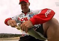 2014美国《FLW钓鱼》BeaverLake