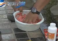 《配制鱼饵视频》钓鱼王鲫鱼饵料配方搭配