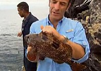 《极限钓鱼》第四季 第1集 英国阿森松岛
