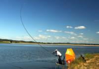 夏季水库钓鱼饵料、水深和选竿技巧