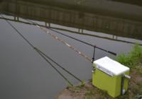 台钓为什么要把竿尖压入水中